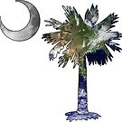 Earth and Moon Palmetto Moon by PalmettoTrading