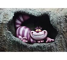 Through The Looking Glass Alice In Wonderland Cheshire Cat Photographic Print