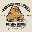 Punsutawney Phils Driving School - STICKER by Vincent Carrozza