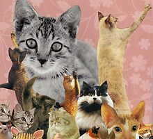 Feline Follies by kewzoo