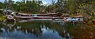 Noble Falls ~ Panorama by Pene Stevens