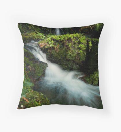 Whataroa ~ ledge drift Throw Pillow