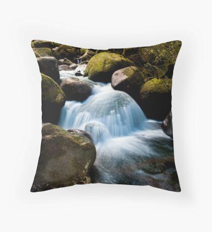 Wairere boulder fall Throw Pillow