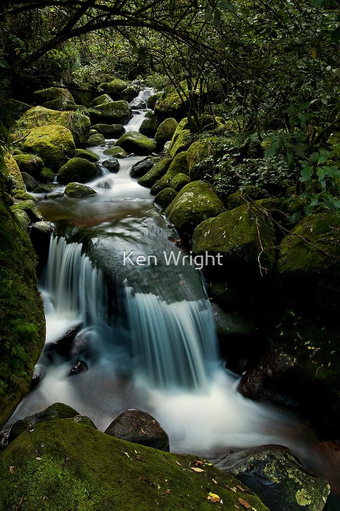 wairere gully drift by Ken Wright