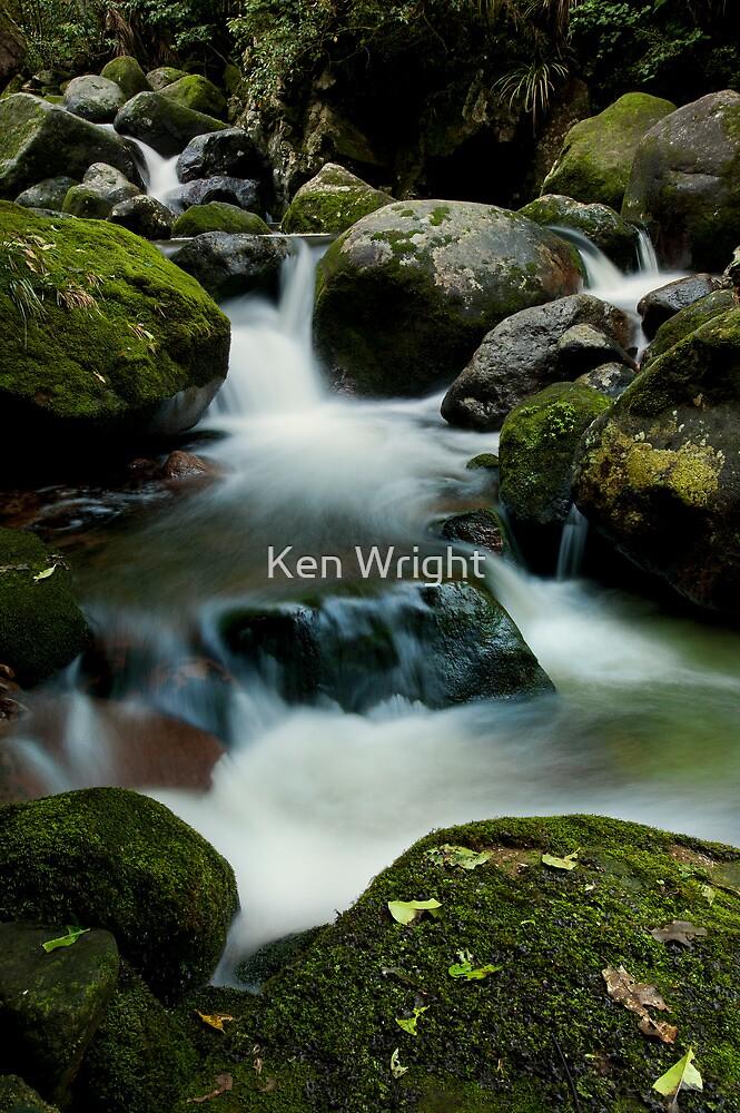 Wairere drift by Ken Wright