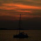 dark sunset by michelle meenawong
