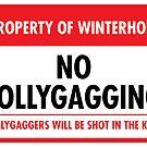 Winterhold Municipal Ordinance (Sticker) by Eozen