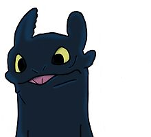 Toothless  by tiger5