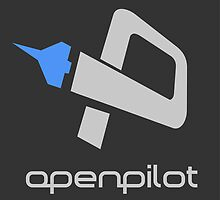 OpenPilot by spackletoe
