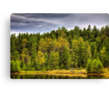 Forest Life Canvas Print