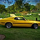 1970 Shelby Mustang GT-500 by TeeMack
