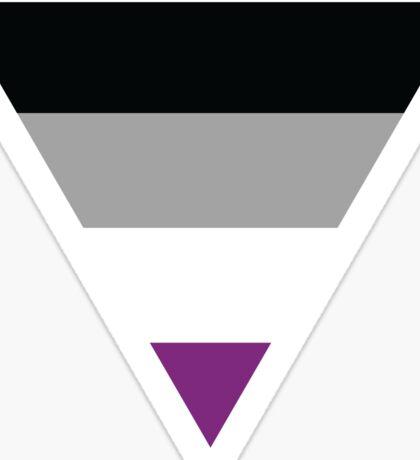 Asexual Pride Flag Sticker