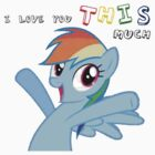 Rainbow Dash loves you THIS much by DerpyDash98