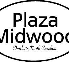 Plaza Midwood, Charlotte, North Carolina by Gina Mieczkowski
