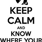 Keep Calm and Know Where Your Towel Is by zachsbanks