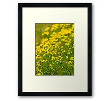 I am in a bright mood  Framed Print