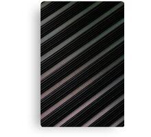Lines, Lines, Lines  Canvas Print