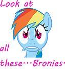 Rainbow Dash Afraid of bronies.  by eeveemastermind