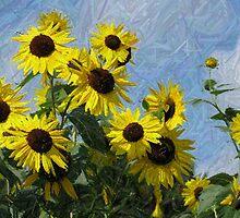 Funky Flowers by Monnie Ryan