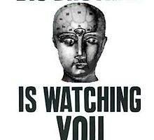 BIG BROTHER IS WATCHING YOU by the cartel