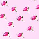 Rose bud by shalisa