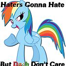 Haters Gonna Hate But Dash Don't Care  by eeveemastermind