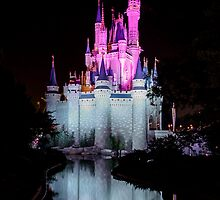 Cinderella's Castle - Pink & Blue w/reflection by Mark Fendrick