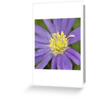 Purple and Gold Greeting Card
