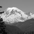 Remarkably Free - Majestic Mount Rainier in Black and White by M-EK