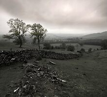 Derbyshire Dales by Darren Burroughs
