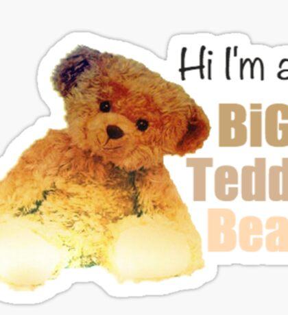 Hi I'm a Big Teddy Bear (Clean) Sticker