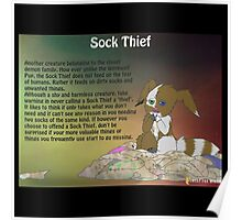 Sock Thief - Short Film Poster