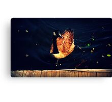 Goose by the Dock Canvas Print