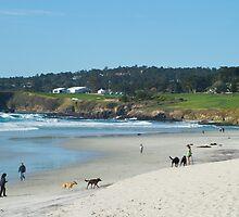 Popular beach by lightportal