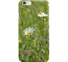 Wild Meadow iPhone Case/Skin