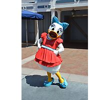 Daisy Flower Duck Character Photographic Print
