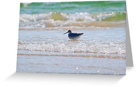 Splashing in the Sea by Barbara Shallue