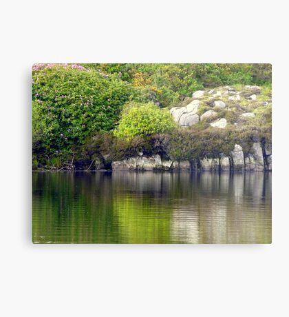 Across A Donegal Lake Metal Print