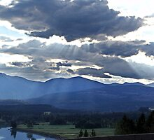 Evening Sky, Cranbrook, British Columbia by Jann Ashworth