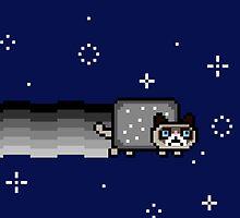 No Cat Sticker by AngryMongo