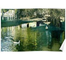 Reflections in the Park Poster