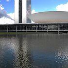 Oscar Ribeiro de Almeida de Niemeyer Soares by Zack Nichols