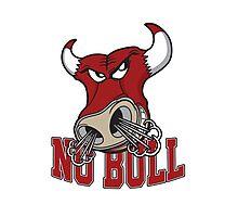 No Bull Photographic Print
