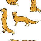 Yellow Mongoose sticker set 1 by HenriekeG