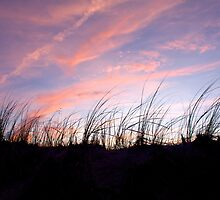 Sunset in the Cape Cod National Seashore by Christopher Seufert