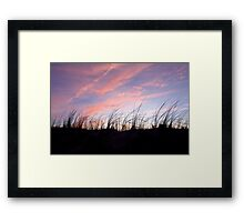 Sunset in the Cape Cod National Seashore Framed Print