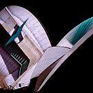 Sydney Opera House @ Sydney Vivid Festival II by Kutay Photography