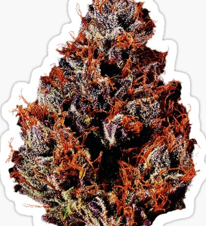 Literally Purple Kush  Sticker