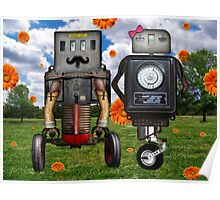 Mr. & Mrs. Robot The Day It Rained Daisies At The Park Poster
