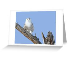 Perfect at any angle Greeting Card